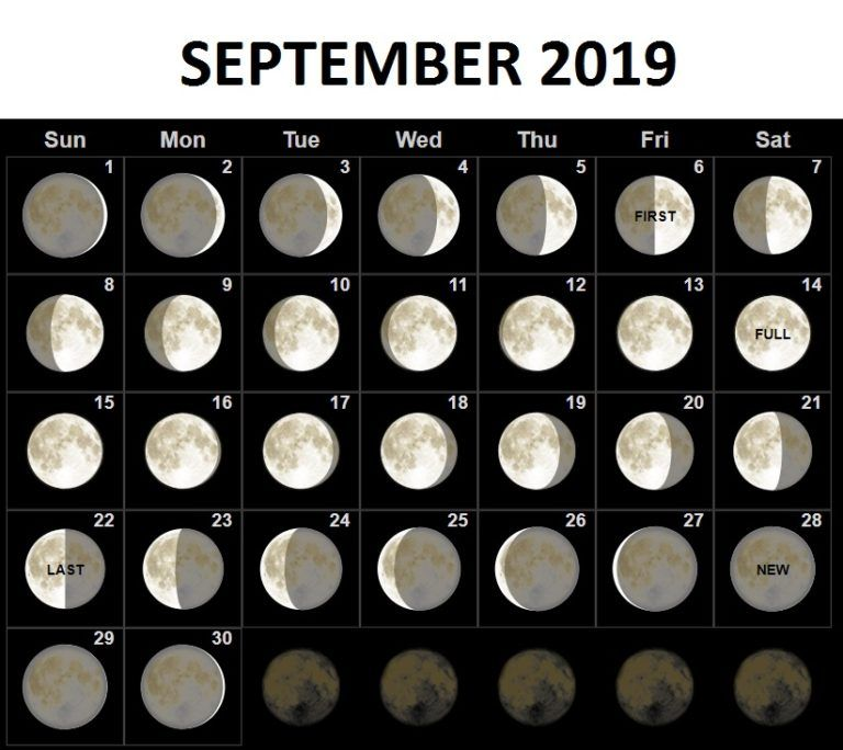 Moon Phases Calendar for September 2019