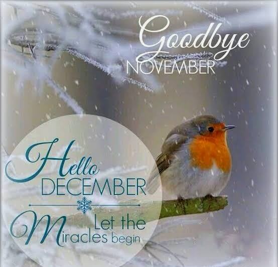 Welcome December and Goodbye November Photos